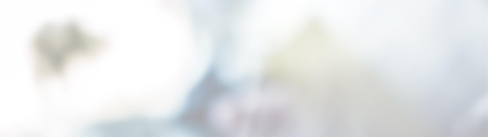 invert-default-slider-image